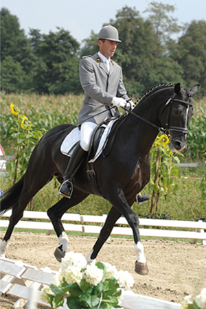 Dancier - licensing champion in 2004 - out of a Lancier-Espri mare