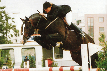 One of Voltaire's most successful sons in Holland, was Farmer, who is out of an Amor-Talisman mare. Farmer is the sire of Dutch Olympic jumping representative, Lowina with Albert Zoer