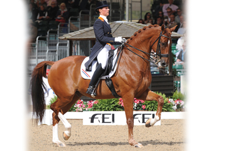 Parzival with Adelinde Corneilson won the GP Special at the 2009 Euro Champs and were part of the gold medal winning Dutch team