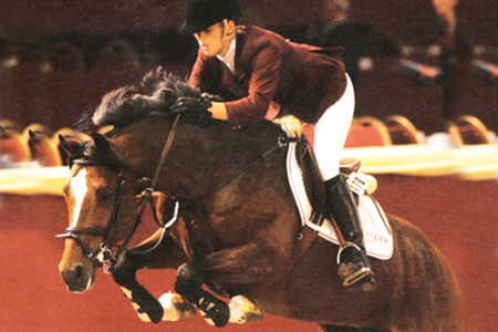 Pino - out of a Burgraaf mare - was a silver medallist at the 2003 World Young horse champs, and won the Grand Prix of Eindhoven with Marielle Schröder in 2006