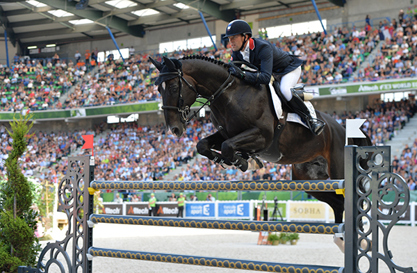 Qlassic Bois Margot by L'Arc De Triomphe, out of a Galoubet mare and ridden by Simon Delestre for the French team at WEG 2014