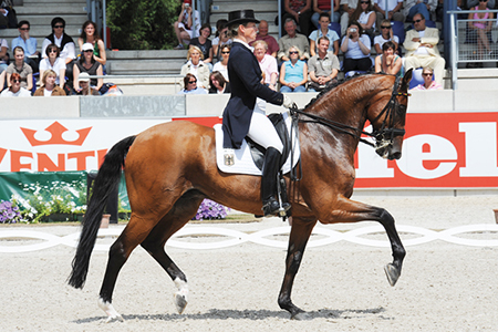 Satchmo and Isabell Werth – top of the world for dressage