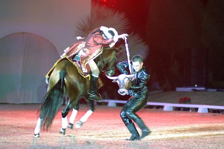bulldancer