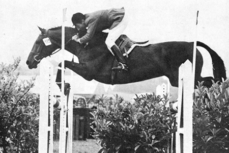 Lutteur B, one of the first showjumping stars by Furioso