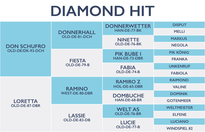 Diamond Hit