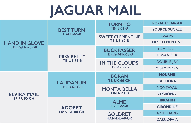 Jaguar Mail