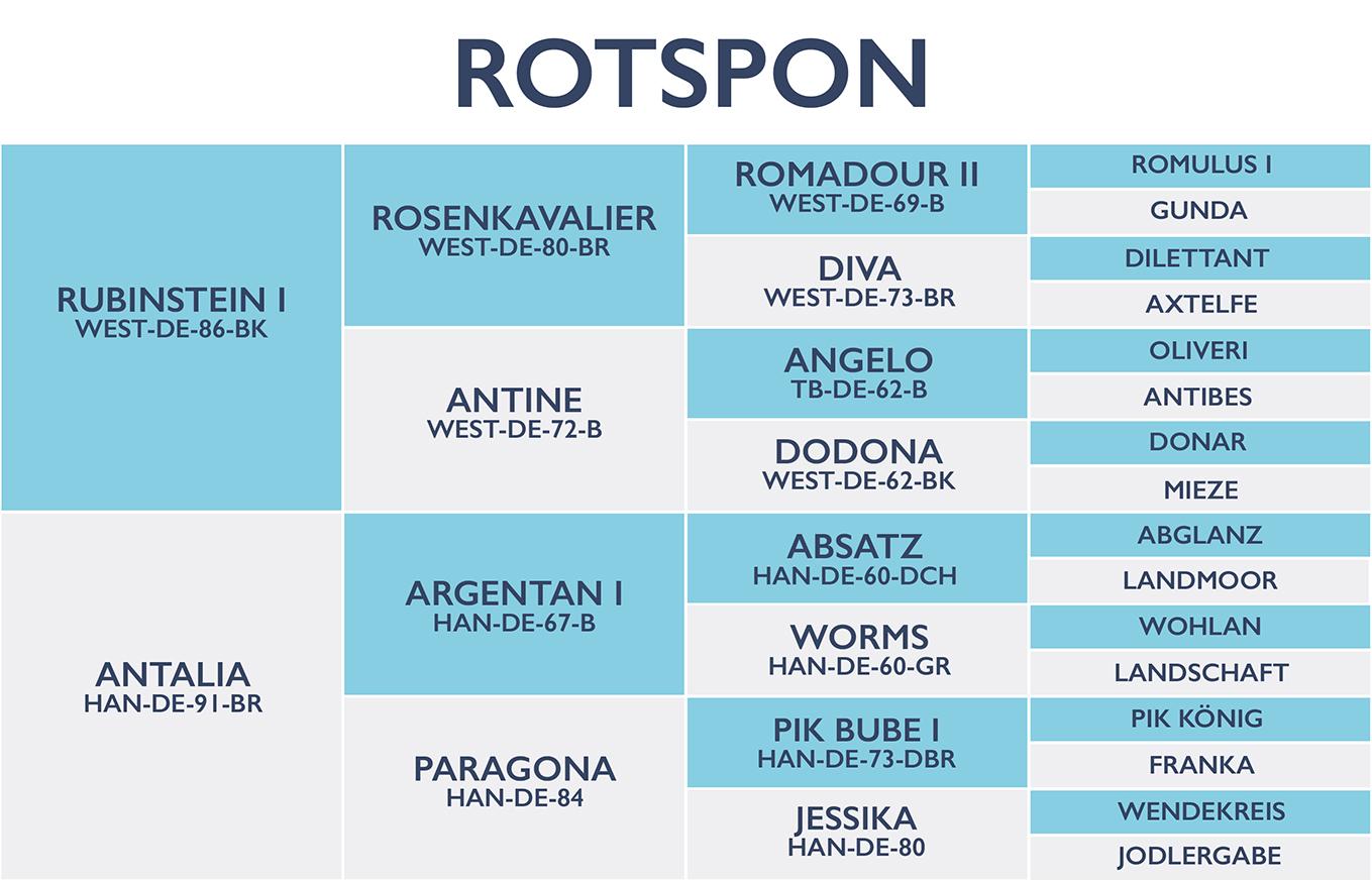 Rotspon