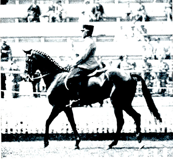 The great dressage judging controversy – does it really