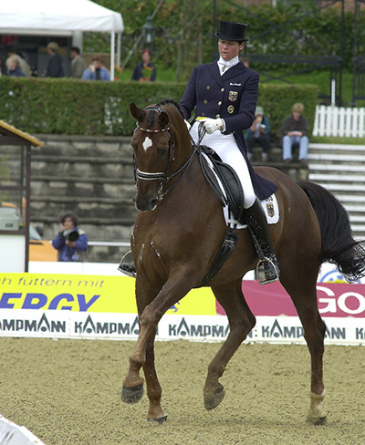 What is Collection with Christoph Hess | The Horse Magazine
