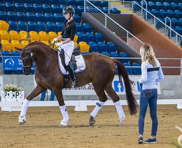 horsemagazine | The Horse Magazine